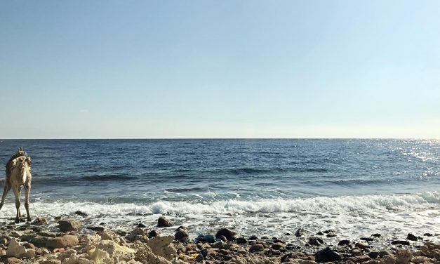 Paradies auf Erden: Warum sollten Sie Dahab besuchen